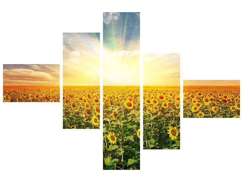 Leinwandbild 5-teilig Ein Feld voller SonnenBlaumen - 120 x 80 cm